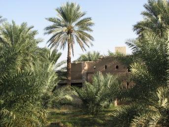 Oman ride 149